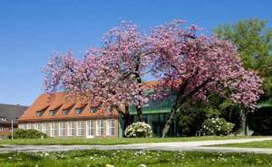 Jacobs University Bremen, may 2010