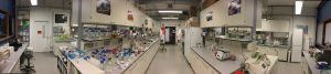 MU Lab (1)